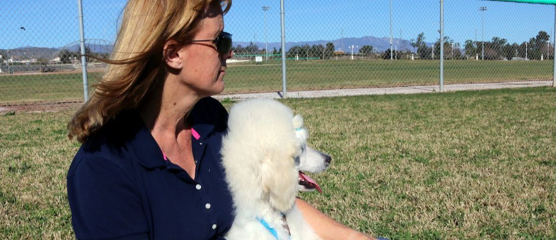 woman in blue shirt holding poodle dog